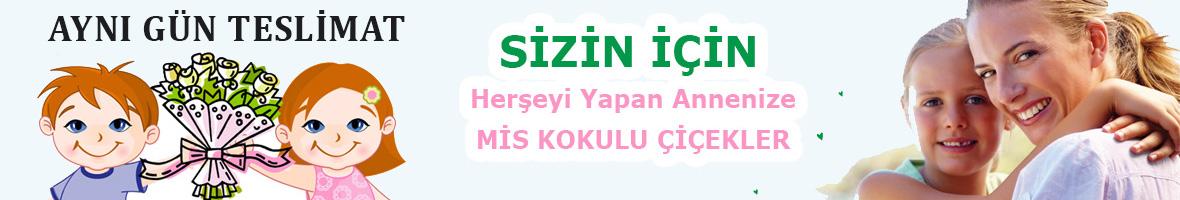 Ana Sayfa Slayt2